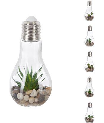 H bombilla decorativa 9x18,5cm led con piedras y plantas modelos surtidos 3560234470071 - 83206
