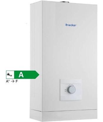 Calentador gas estanco Neckar 10 litros gas butano 7736504897